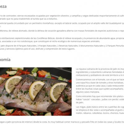 Andalucía Trips (Portfolio 7)